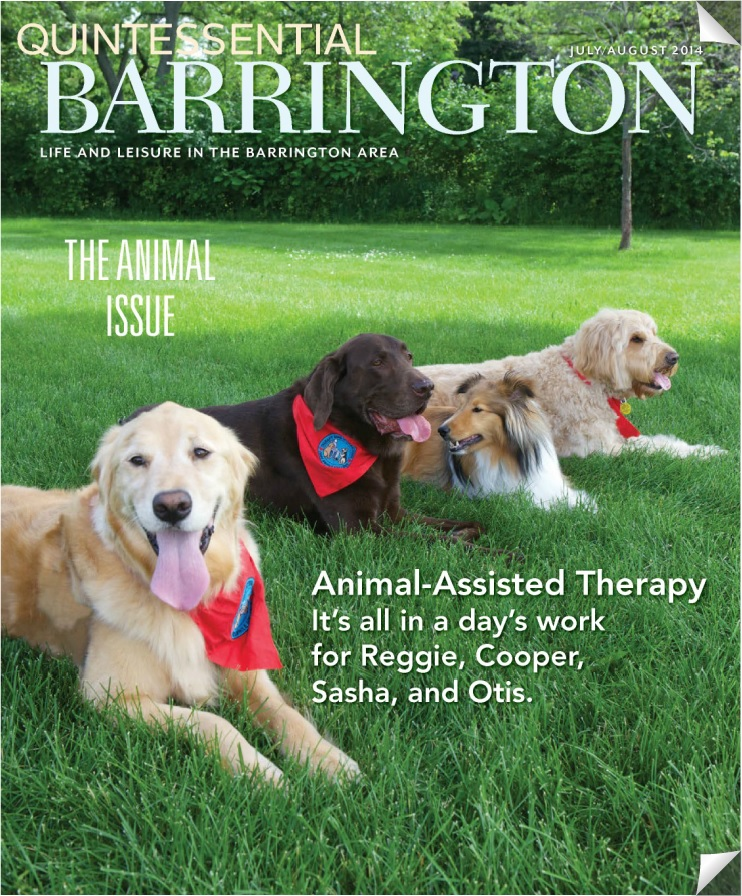 Quintessential Barrington July-August 2014 Cover